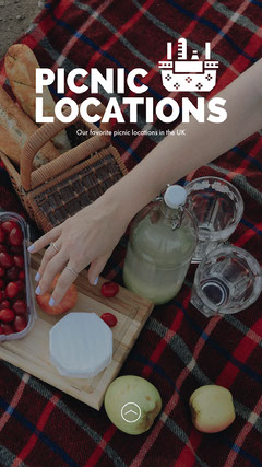 Best Picnic Locations Instagram Story with Hand Reaching for Food Picnic Flyer