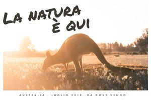 Australian travel post cards  Cartoline