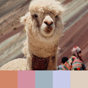 Color Palettes | Pastels 5 101 Brilliant Color Combos