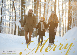 Light, Warm Toned, Merry Christmas Wishes Family Card Holiday Card
