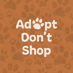 Orange Paw Print Pattern Adopt Don't Shop Message Dog Adoption Flyer