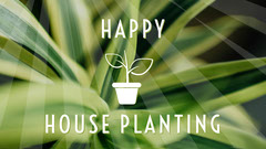Green Illustrated Houseplant Course Youtube Thumbnail Plants