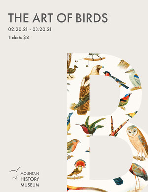 Cream Grey Birds Natural Museum Art Letter  Kunstplakat