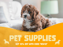 Yellow Pet Supplies Shop Ad with Dog Discount