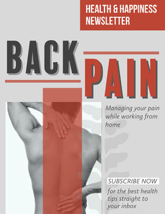 Red & Grey Back Health Newsletter Health Poster