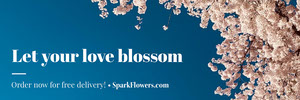 Pink Cherry Blossom Flower Delivery Service Horizontal Ad Banner Ads Banner