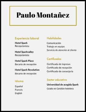 Paulo Montañez Currículum profesional
