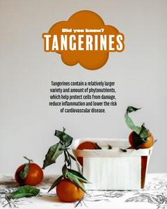 Tangerines Instagram Portrait Fruit