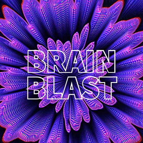 BRAIN BLAST How to Get More Followers on Twitter