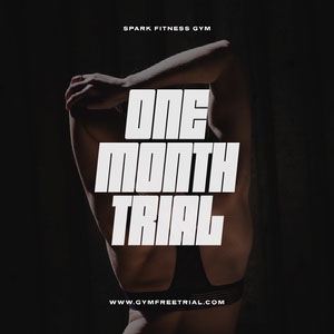 ONE MONTH TRIAL 50 Modern Fonts