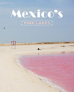 mexico pink lake instagram portrait Water