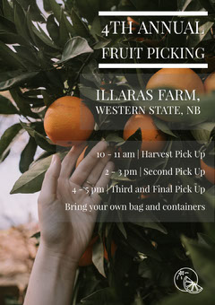 4th Annual Fruit Picking Fruit