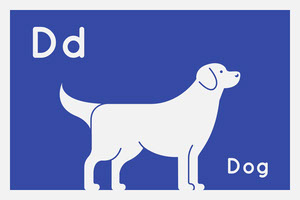 Blue and White Flashcard Animal Dog Card Flashcard
