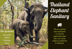 Thailand Travel Brochure with Elephants Travel