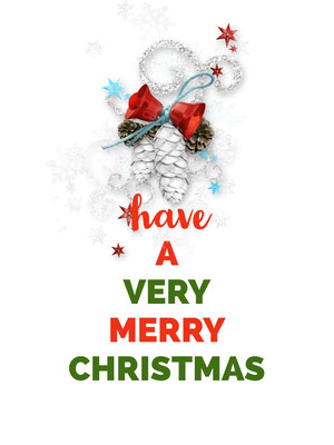 Red and Green Merry Christmas Wish Card Christmas Card