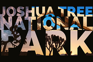 Black and Beige Collage Joshua Tree National Park Card Customized Vinyl Banner