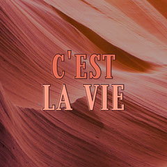 Red and Pink Cest la vie Catchphrase Instagram Post France