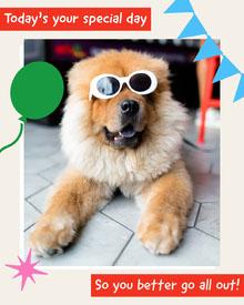 Funny Dog Special Birthday Party Card Cartões