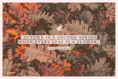 """AUTUMN IS A SECOND SPRING WHEN EVERY LEAF IS A FLOWER."" Nature"