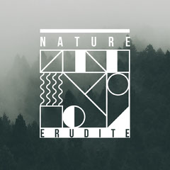 Forest in Fog Geometric Shape Album Cover Forest