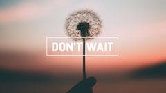 Motivational Dandelion Sunset Desktop Wallpaper Background