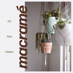 DIY Plant Holders Instagram Square Graphic with Houseplants Decor