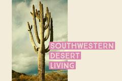 Pink and Warm Toned Desert Facebook Banner Desert
