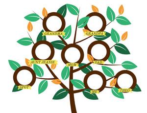 Circular Family Tree Family Tree Templates