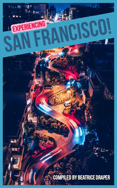 San Francisco Travel Guide Kindle Cover with Winding Street at Night California