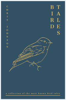 bird tale book cover  Couverture de livre