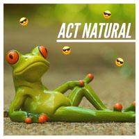 Green Frog Instagram Square Meme Meme