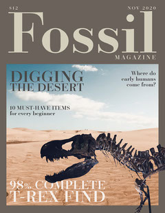 Brown and Blue Fossil Magazine Cover Letter Desert