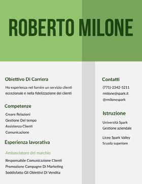 Roberto Milone Curriculum professionale