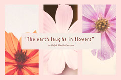 """The earth laughs in flowers""  Positive Thought"