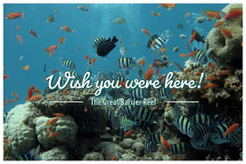 Great Barrier Reef Australia Travel Postcard Vykort