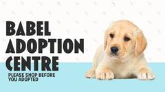 White & Blue Babel Adoption Centre Twitter Post Dog Adoption Flyer