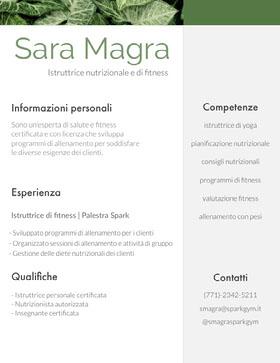 Sara Magra Curriculum professionale