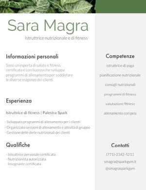Sara Magra Curriculum