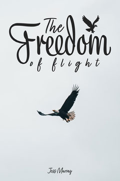 Flying Eagle Freedom of flight book cover Bird