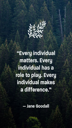 Inspiring Nature Themed Conservation Quote Play Poster