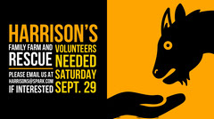Yellow, Black and White Rescue Farm Ad Twitter Banner Volunteer