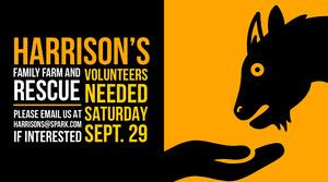 Yellow, Black and White Rescue Farm Ad Twitter Banner Intestazione per Twitter