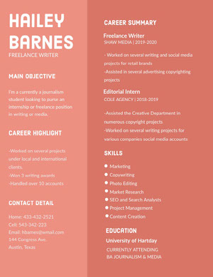 Red Freelance Writer and Journalist Student Resume Resume  Examples