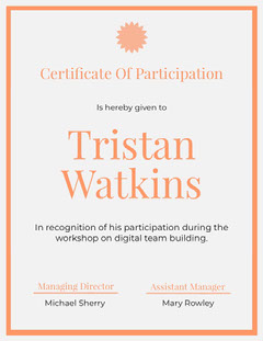 Certificate Of Participation Workshop