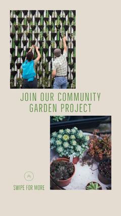 Community Garden Instagram Story  Garden