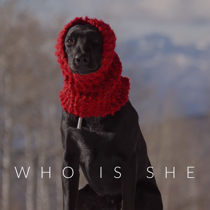 Who is she Dog Memes