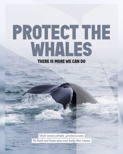 Blue & Grey Protect the Whales Instagram Portrait Animal