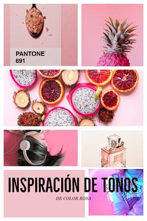 moodboards  Collage de fotos