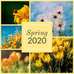 spring 2020 Instagram square Flowers