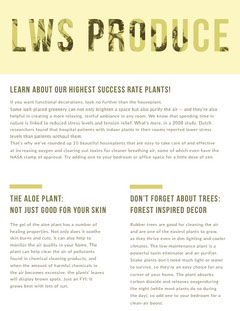 Yellow Agriculture and Plants Newsletter Graphic Trees